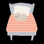睡眠とダイエッとの関係